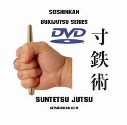 martial arts instructional dvd